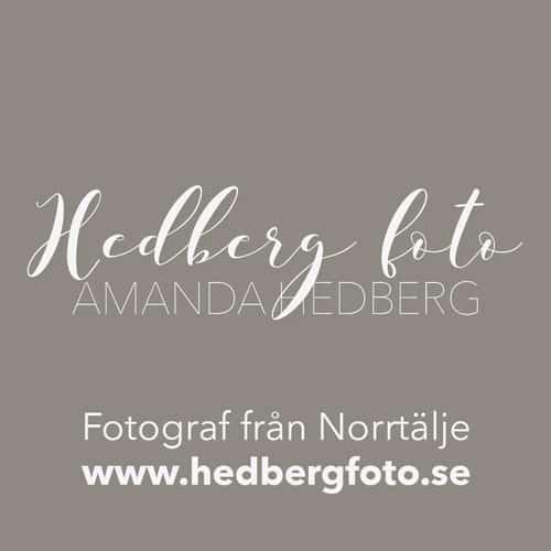 HedbergFoto_B