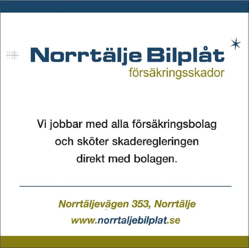norrtaljebilplat_2021